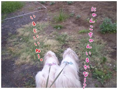 2010-09-03-05.jpg