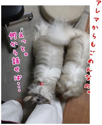 2010-09-04-03.jpg