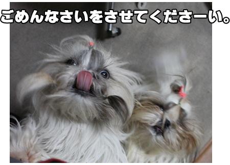 2010-09-04-04.jpg