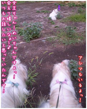 2010-09-06-02.jpg