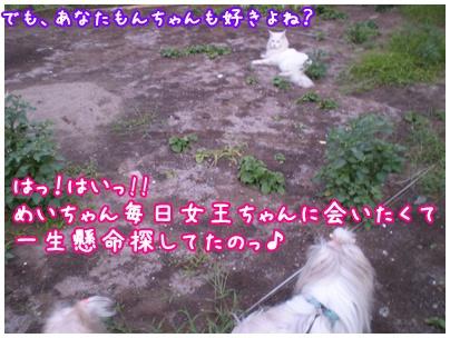 2010-09-06-06.jpg