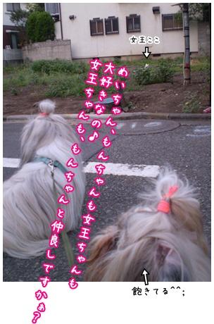 2010-09-06-07.jpg