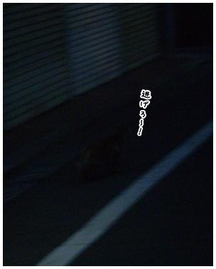 2010-09-08-04.jpg