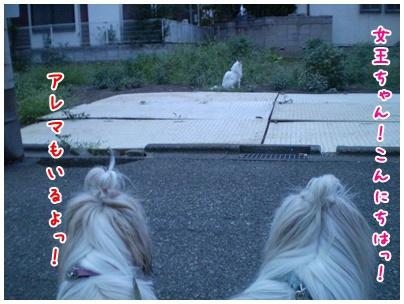 2010-09-08-06.jpg