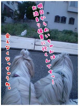 2010-09-08-07.jpg