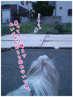2010-09-08-08.jpg