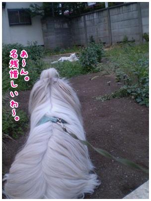 2010-09-08-11.jpg