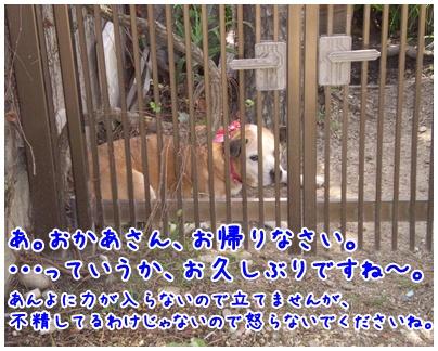 2010-09-10-01.jpg