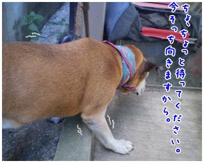 2010-09-10-02.jpg