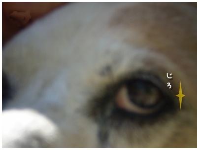 2010-09-11-06.jpg