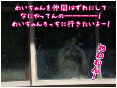 2010-09-11-07.jpg