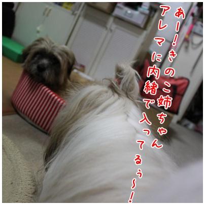2010-09-12-04.jpg
