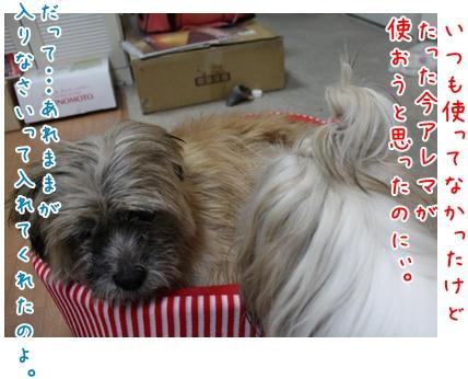 2010-09-12-05.jpg
