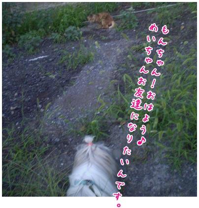 2010-09-14-02.jpg