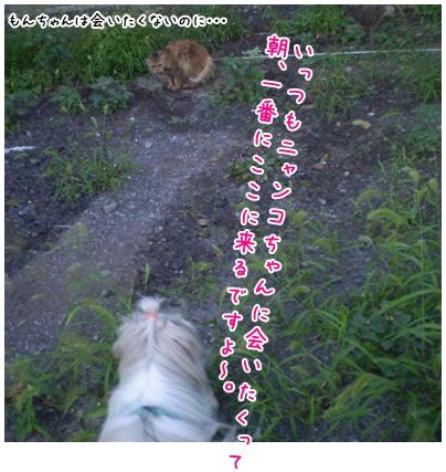 2010-09-14-03.jpg