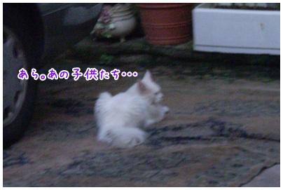 2010-09-14-05.jpg