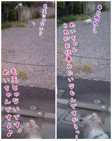 2010-09-15-04.jpg