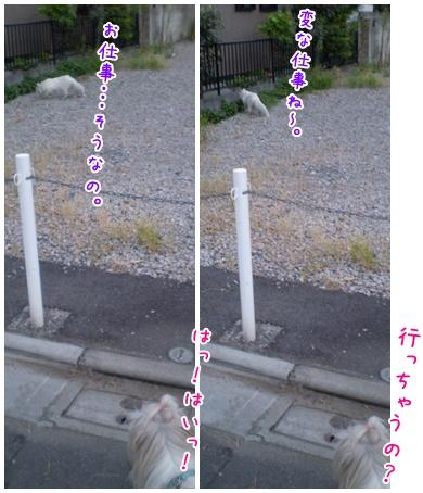 2010-09-15-05.jpg