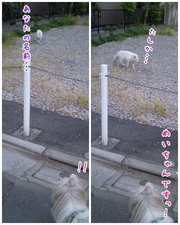 2010-09-15-06.jpg