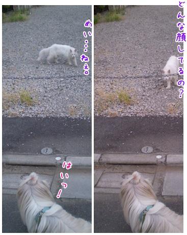 2010-09-15-07.jpg