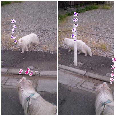 2010-09-15-08.jpg