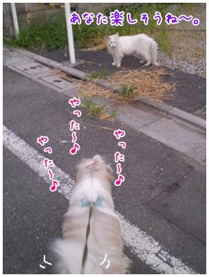 2010-09-15-09.jpg