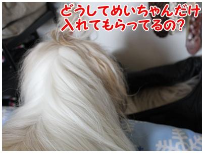2010-09-16-01.jpg