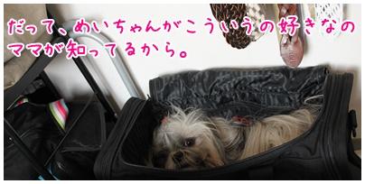 2010-09-16-03.jpg