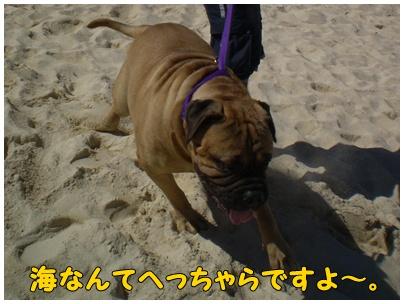 2010-09-19-04.jpg