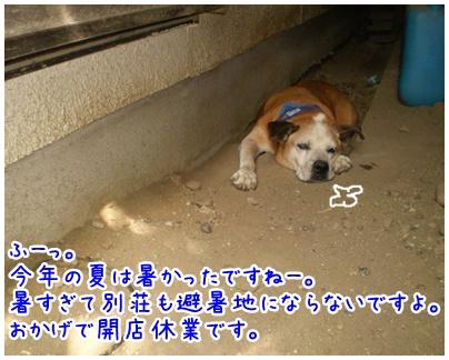 2010-09-24-01.jpg