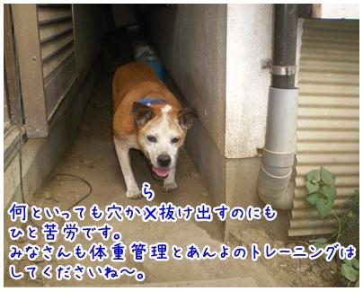 2010-09-24-02_20100923204348.jpg