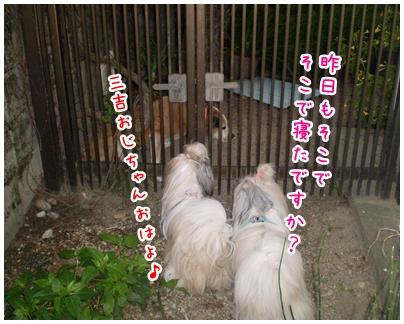 2010-09-24-03.jpg