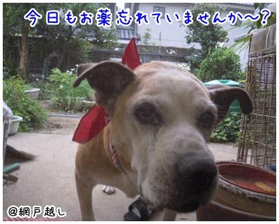 2010-09-24-04.jpg