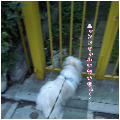 2010-09-27-01.jpg