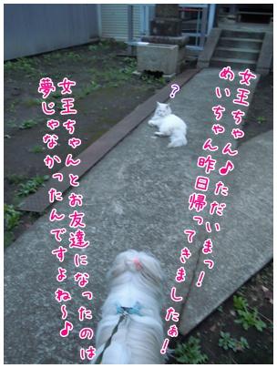 2010-09-27-03.jpg