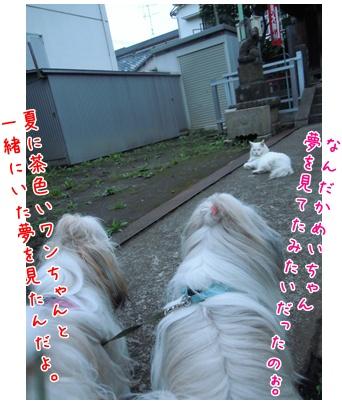 2010-09-27-04.jpg