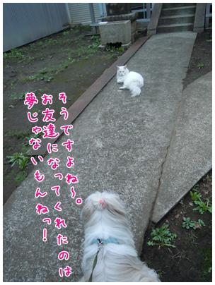 2010-09-27-06.jpg