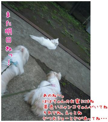 2010-09-27-07.jpg