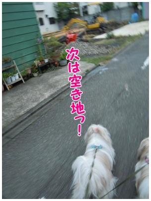 2010-09-27-08.jpg
