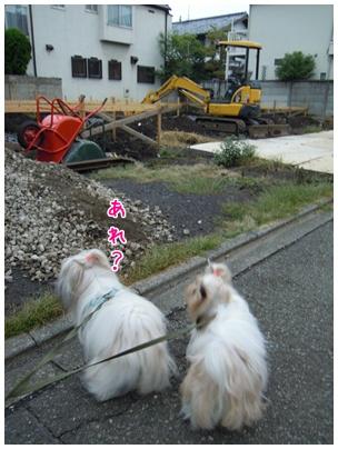 2010-09-27-09.jpg