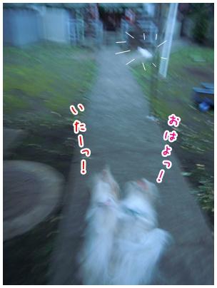 2010-09-30-01.jpg