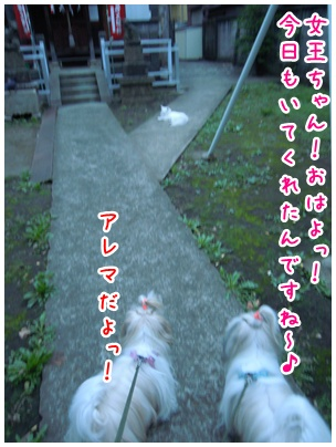 2010-09-30-02.jpg
