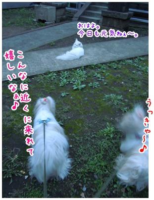 2010-09-30-03.jpg