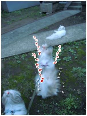 2010-09-30-04.jpg
