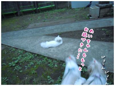2010-09-30-05.jpg