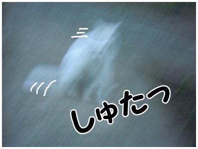 2010-09-30-06.jpg