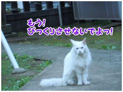 2010-09-30-07.jpg