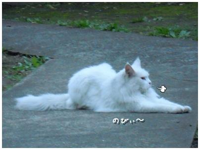 2010-09-30-09.jpg