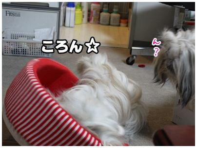 2010-10-01-03.jpg