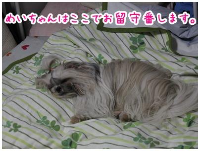 2010-10-03-02.jpg